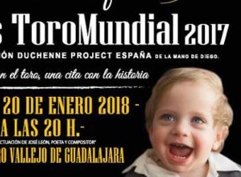 Gala benéfica: IX gala benéfica de premios ToroMundial 2017