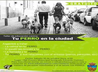 Quedan plazas para los  talleres de  cultivo en macetas y adiestramiento canino, organizados por la Concejalía de Medio Ambiente