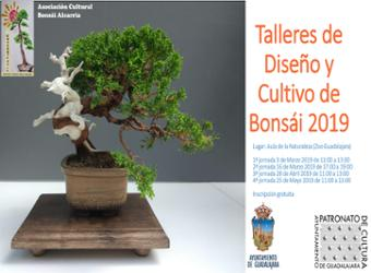 El 3 de marzo arrancan los talleres de diseño y cultivo de bonsáis 2019