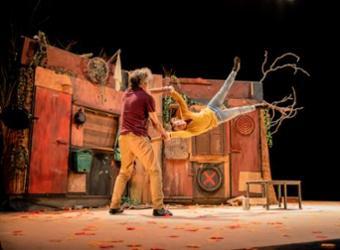 Circo contemporáneo. Distans