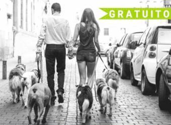 2019-04-27 - Taller de educación canina. Tu perro en la ciudad